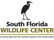 South Florida Wildlife Center